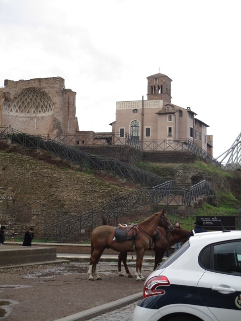 Carabinieri-Pferde :D