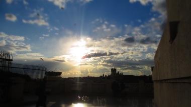 Abendsonne - was für ein Licht <3