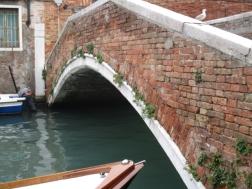 bewachsene Brücke
