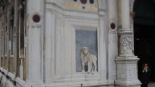Löwenrelief