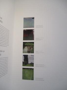 Klimt Attersee Bilder