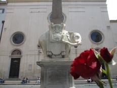 Obelisco della Minerva mit meiner Doppelrose