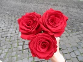 Aber ich kaufe 3 wunderschöne rote Rosen