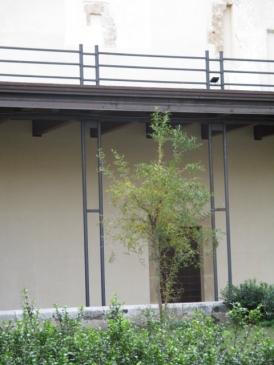 Garten des Liedes der Lieder mit einem wilden Granatapfelbaum