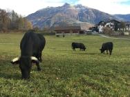 Aosta_3666