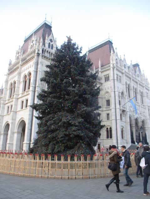 Der Weihnachtsbaum in einem Schlittenkreis