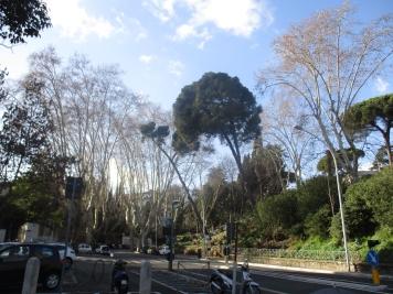 Roma_0032