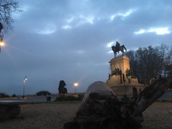 Roma_5229